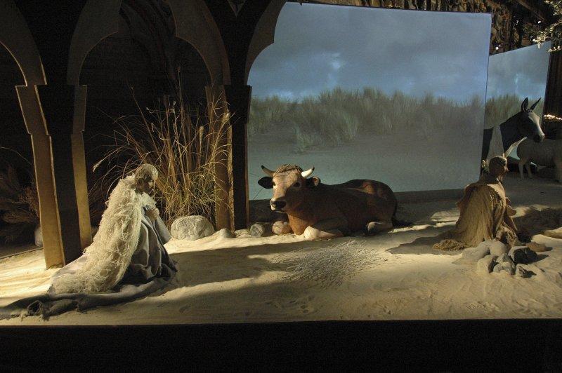 Nativity scene in Notre Dame