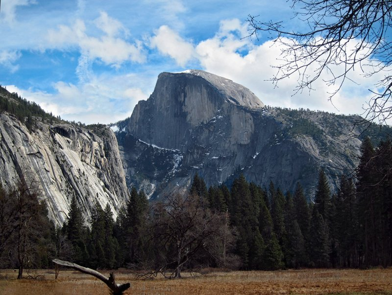 Half dome from Cooks Meadow, Day 3, S95 #3801
