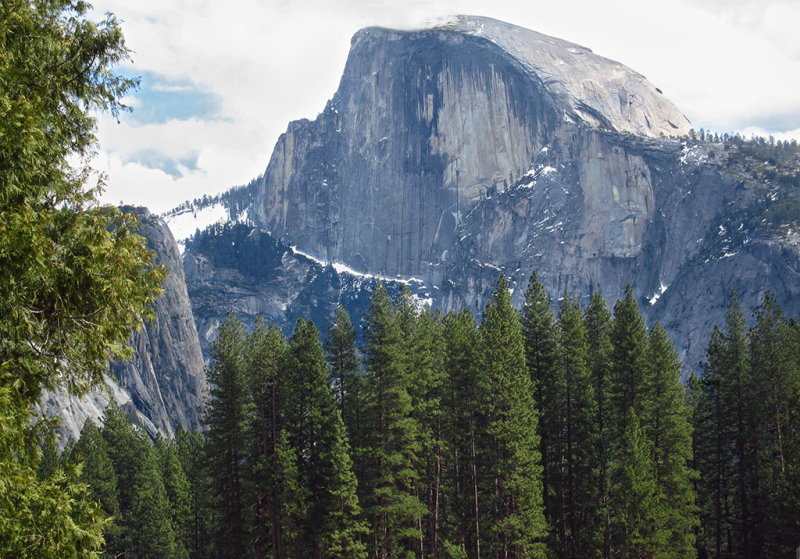 Finally saw Half Dome when at other end of Cooks Meadow, Day 3, S95 #3793