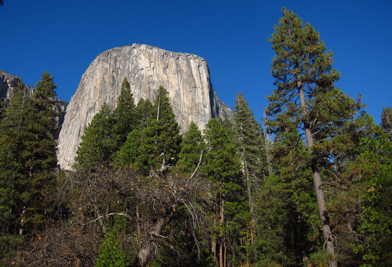 El Capitan from another perspective 7 minutes later.. #2656