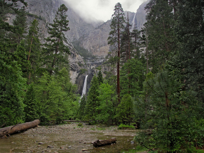 Lower Yosemite Falls path, double falls, creek, in rain,the next day, 5/26.  #2657