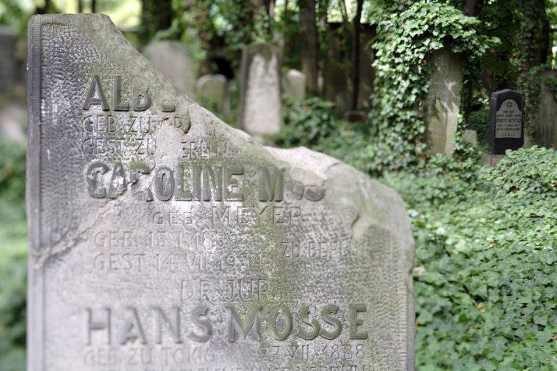 Jüdischer Friedhof / Prenzlauer Berg