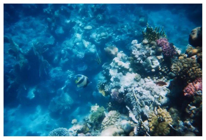 Under Water - VI