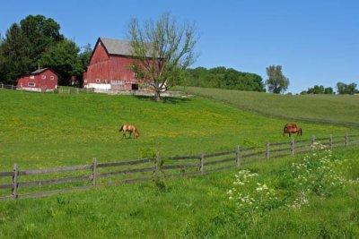 Camp Linden Road Farm