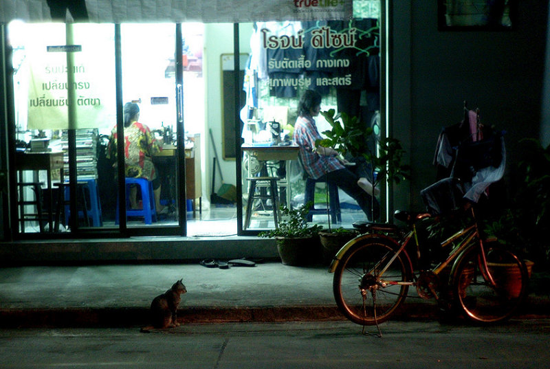Night Stalker Bangkok: Guardian