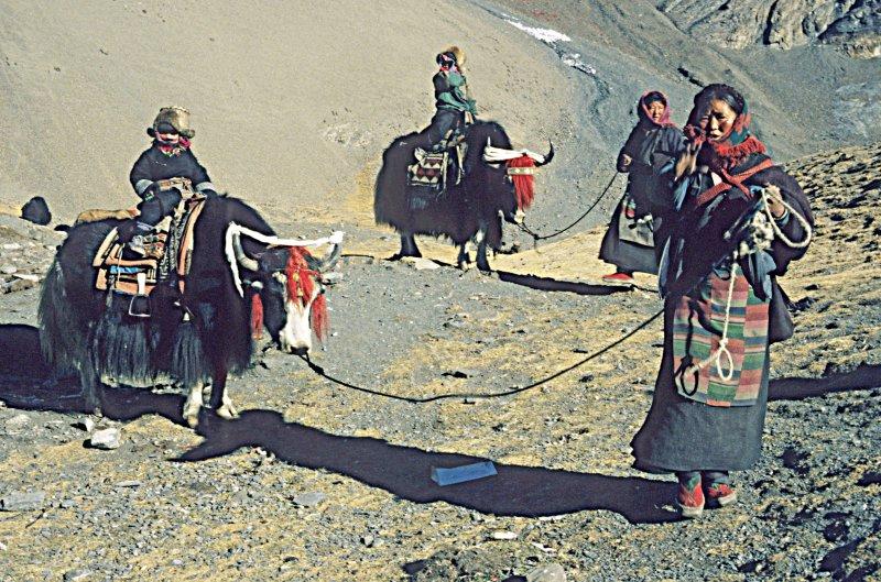 Nomads at Karo La Pass