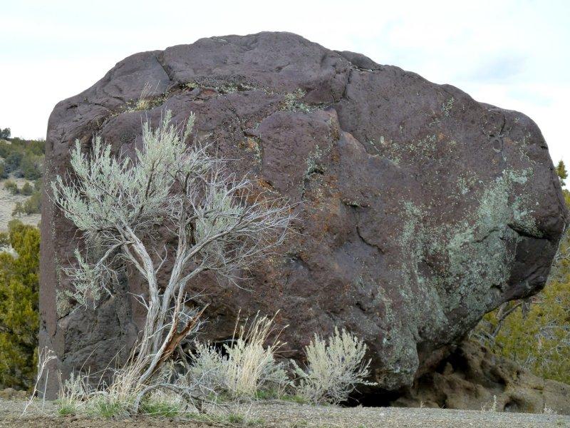 Black Rock and Sage Massacre Rocks State Park P1040952.jpg