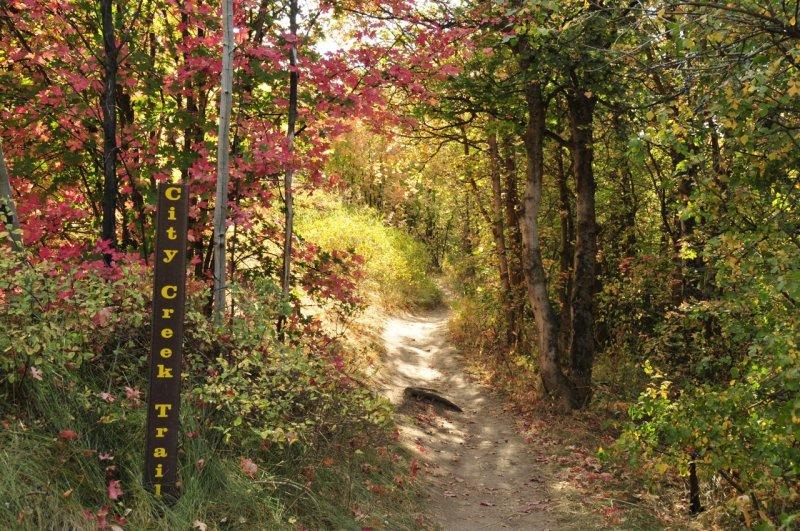 City Creek Trail _DSC1526.jpg