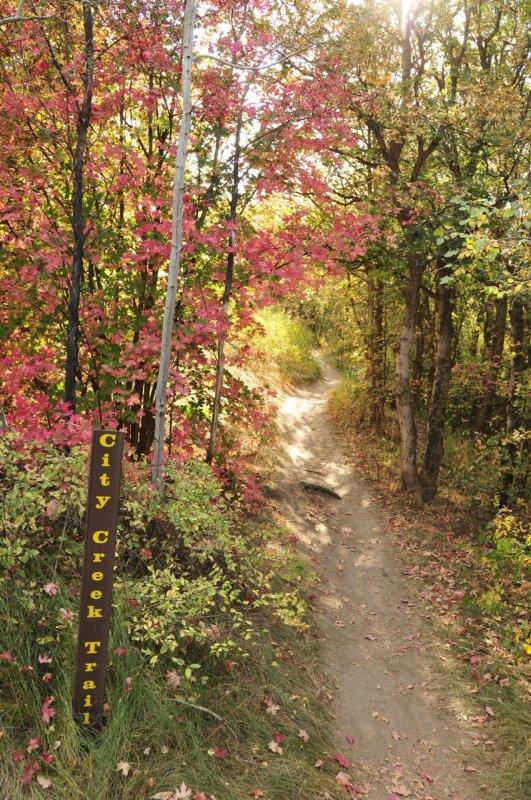 City Creek Trail _DSC1530.jpg