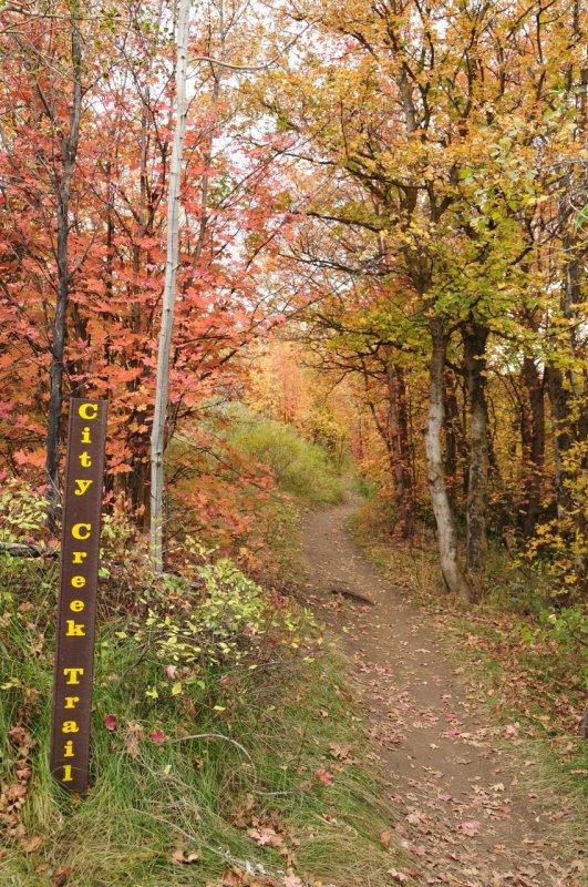 City Creek Trail Sign - Autumn Scene _DSC1808.jpg