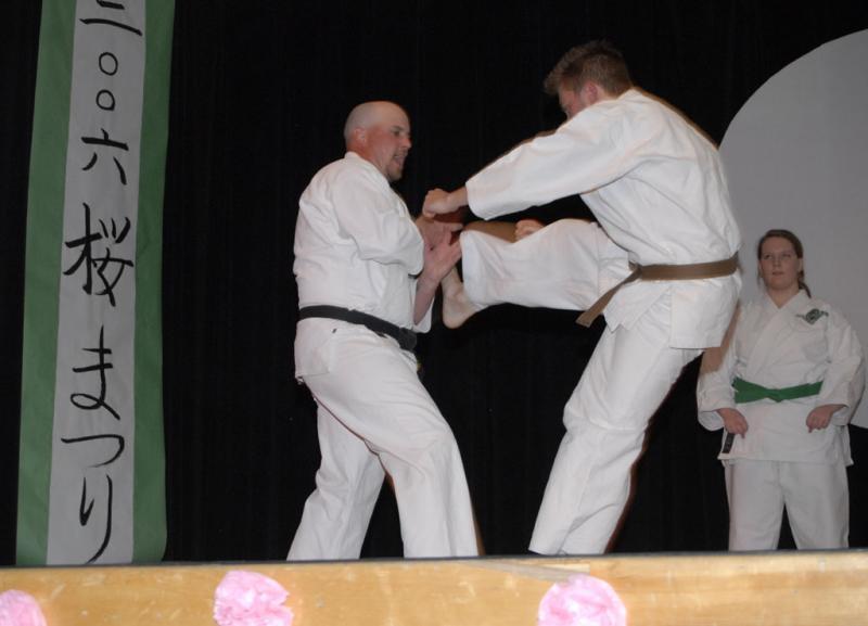 karate exhibit ISU cherry blossom festival _DSC0208.jpg
