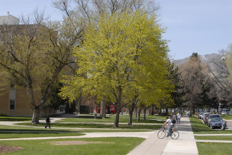 Springtime at ISU smallfile _DSC0006.jpg