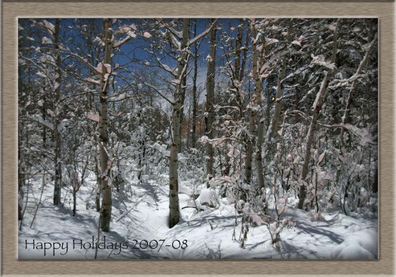 Pocatello Woods in Moonlight - Happy Holidays 2007 _DSC0456_2.jpg