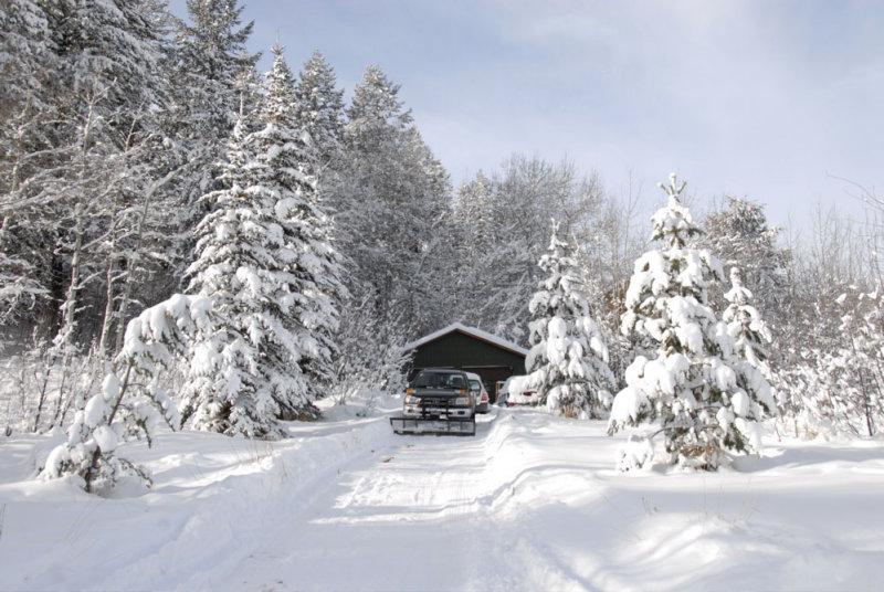 winter at home _DSC0457.jpg
