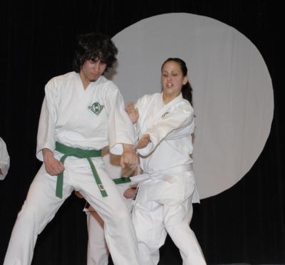 karate exhibit ISU cherry blossom festival _DSC0210.jpg