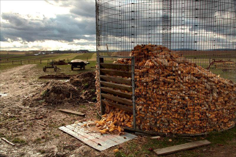 Corn crib on a fall day.