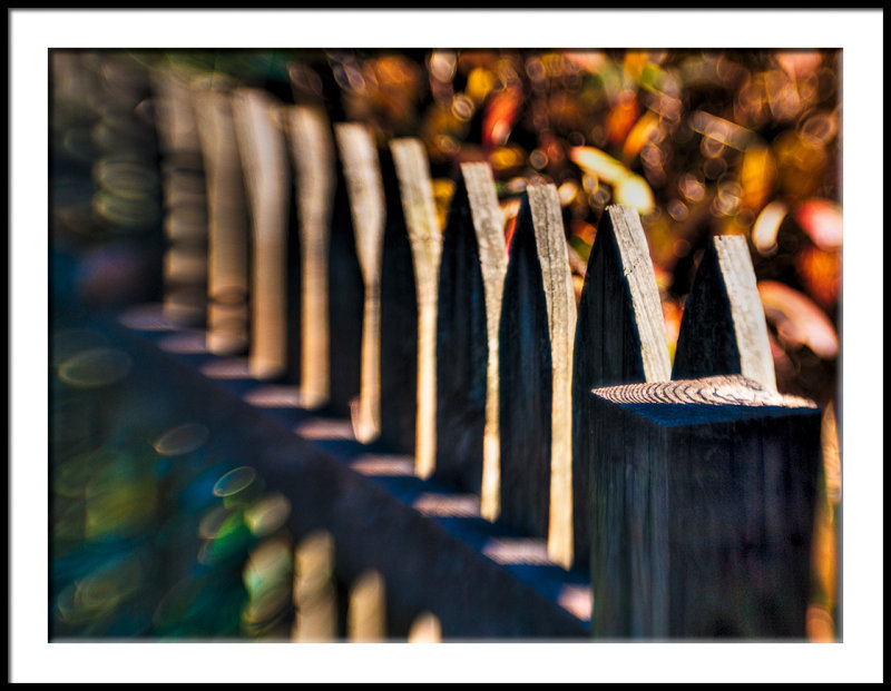 Picket Fence-Fall
