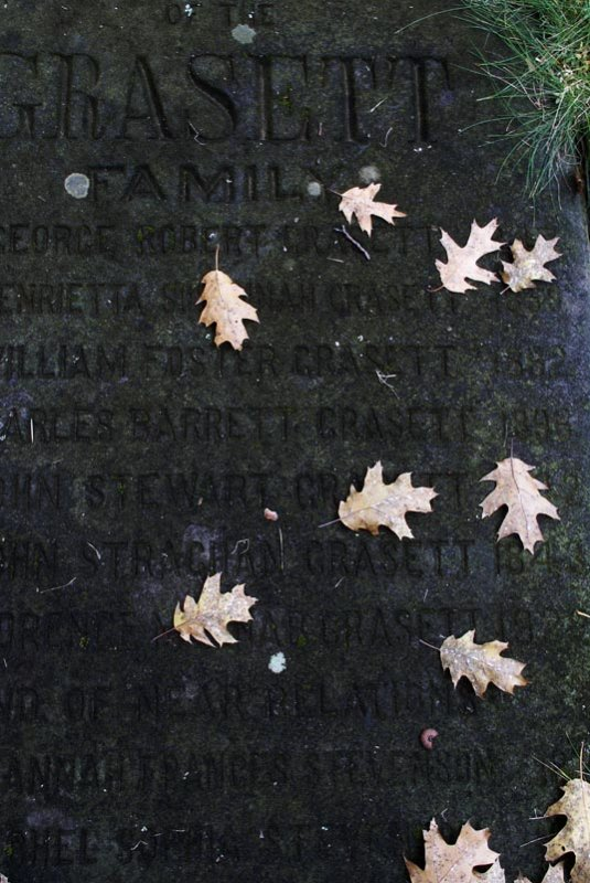Fallen Oaks