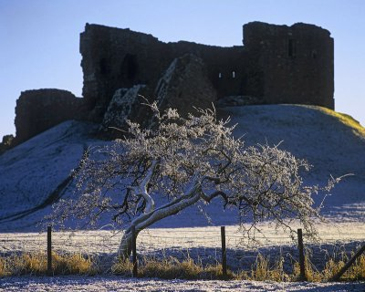 Hawthorn and Castle