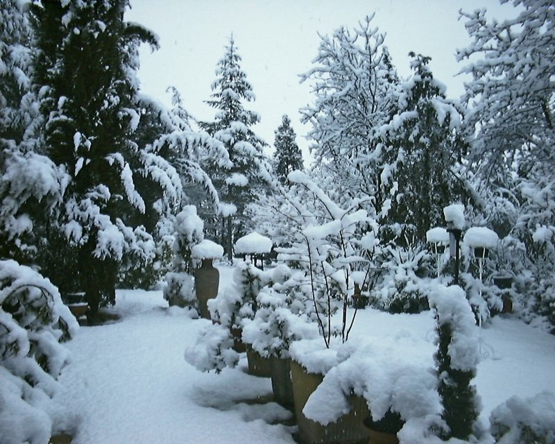 neige-3-3-05 2.JPG