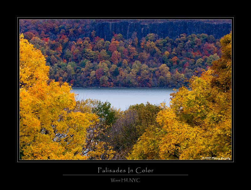 Palisades Color