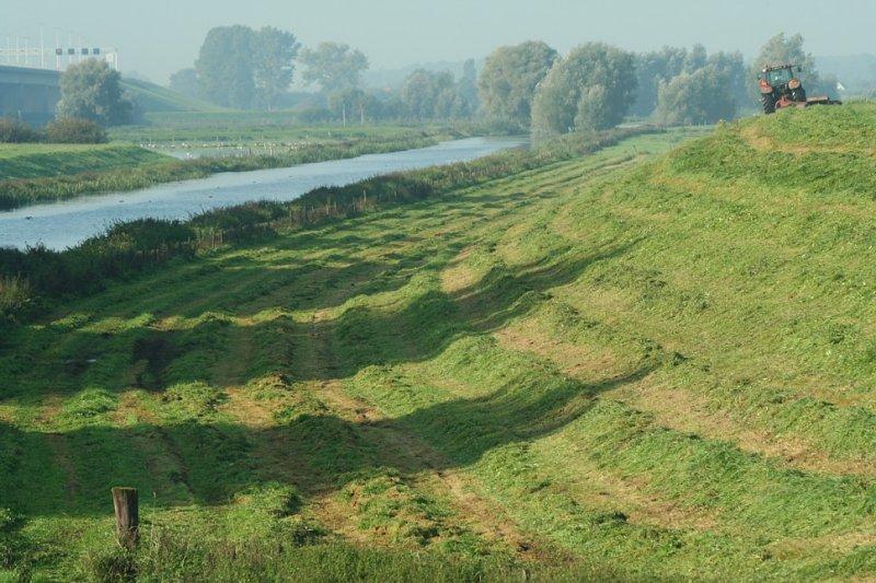 Schipbeek lines