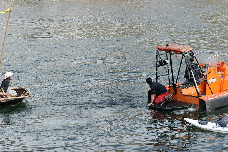 3106 Brest 2008 IMG_9002 DxO web.jpg