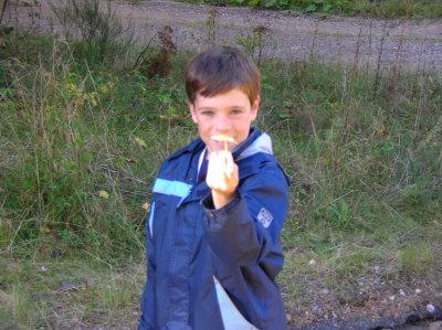 Finn and The Mushroom