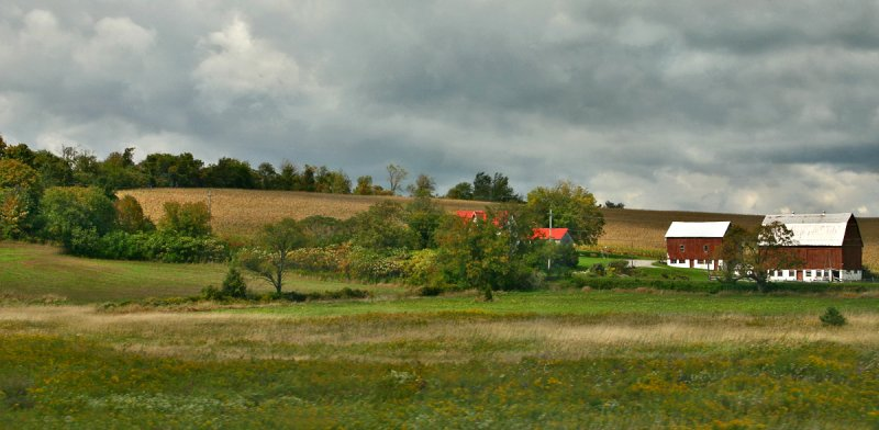 Rural Ontario Road