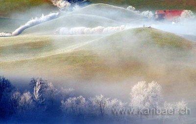 Kalt und neblig / Cold And Foggy (4493)