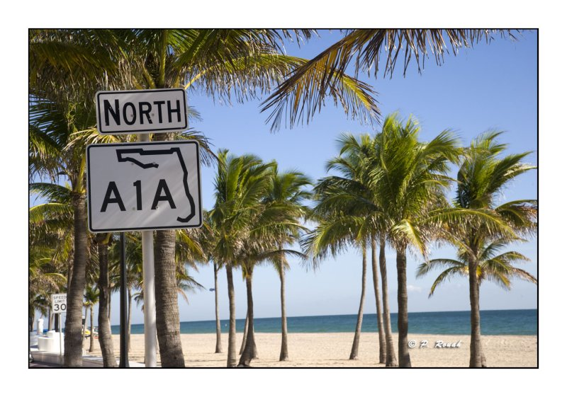 Fort Lauderdale Beach - 3314
