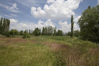 Aizanoi june 2008 2086.jpg
