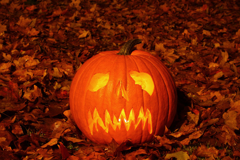 Autumns cold brings the pagan dead...