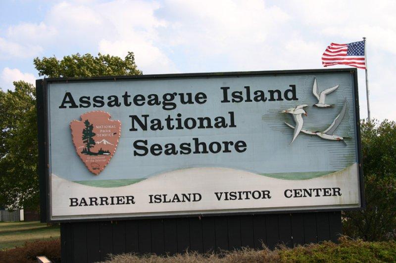 Assateague Island