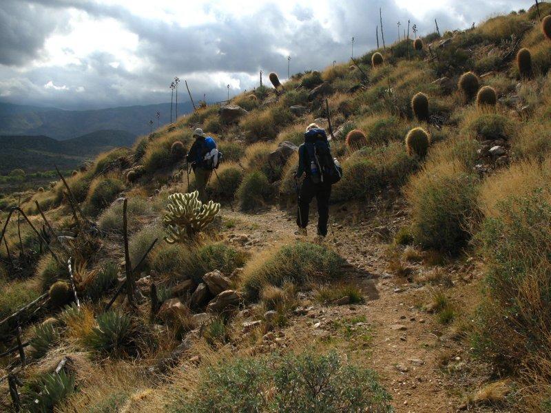 hikers on san felipe.jpg