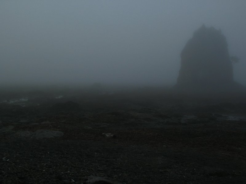 foggy beach.jpg