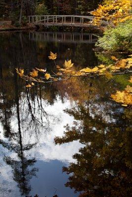 Birdsacre Pond Bridge #5