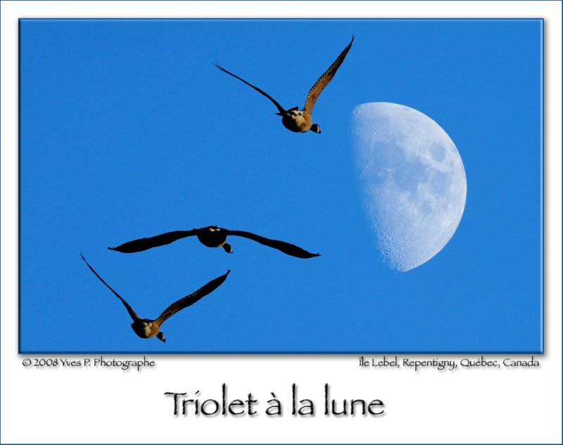 Triolet � la lune ...