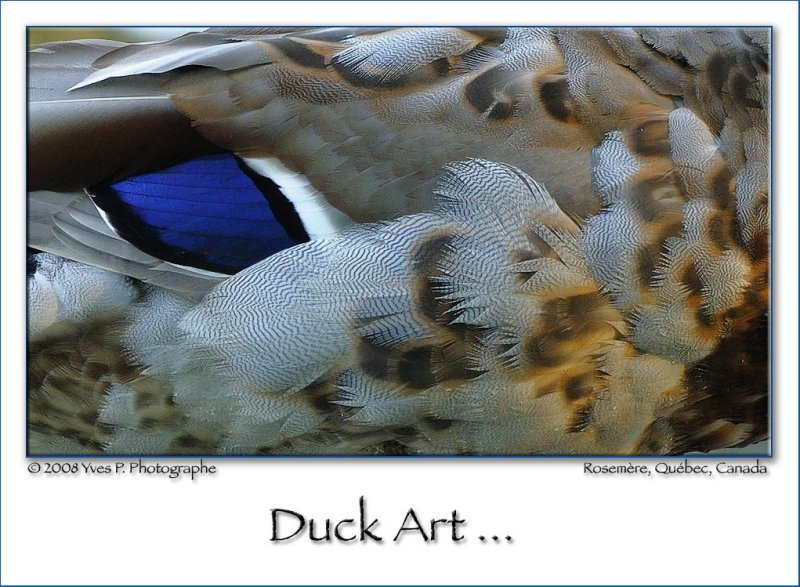 Art Mallard ...
