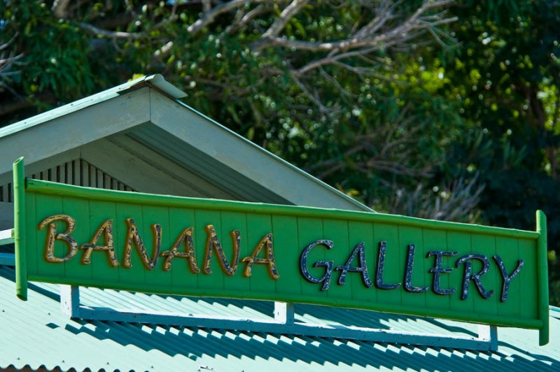 banana gallery