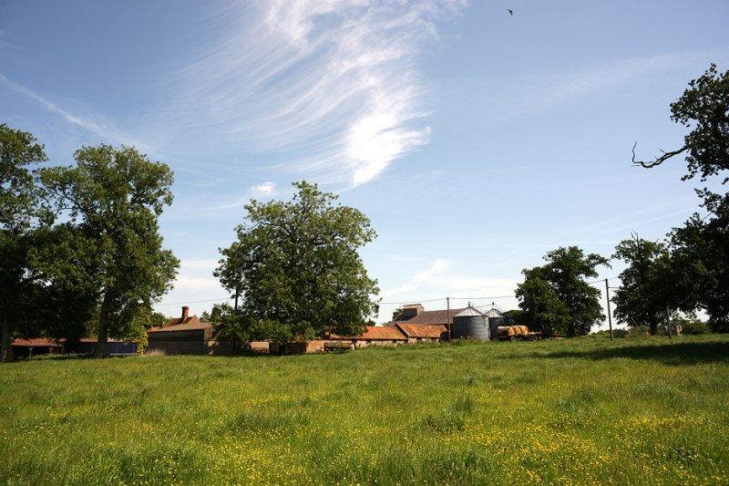 Dairy Farm, Norfolk, UK