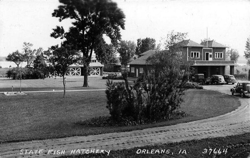Orleans Hatchery 1930s