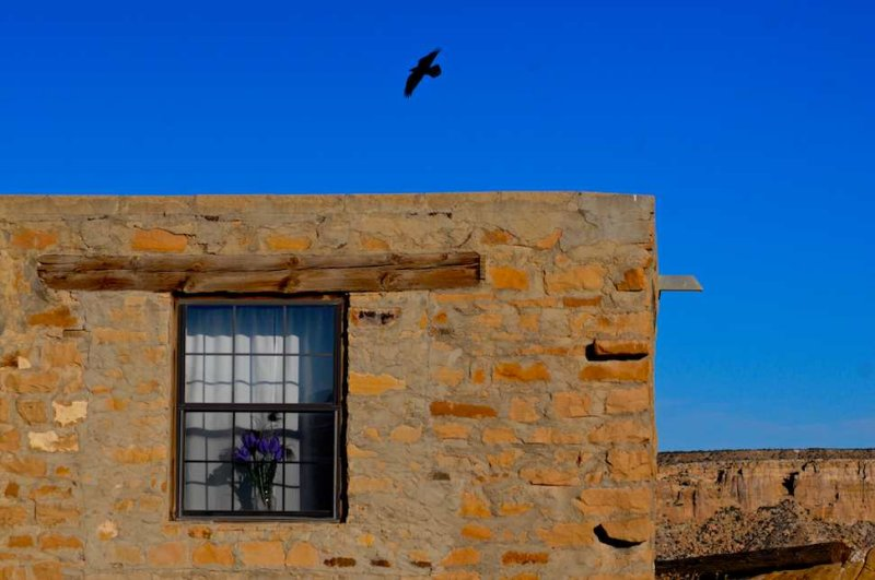 Raven Over Home, Acoma Pueblo, New Mexico