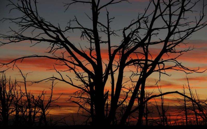 Fire in the Sky - Mesa Verde