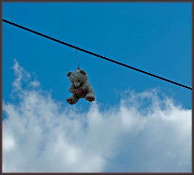 Poor Teddybear