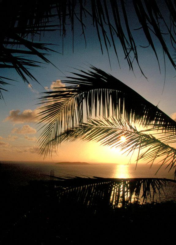 Palomino Island off the Coast of Puerto Rico