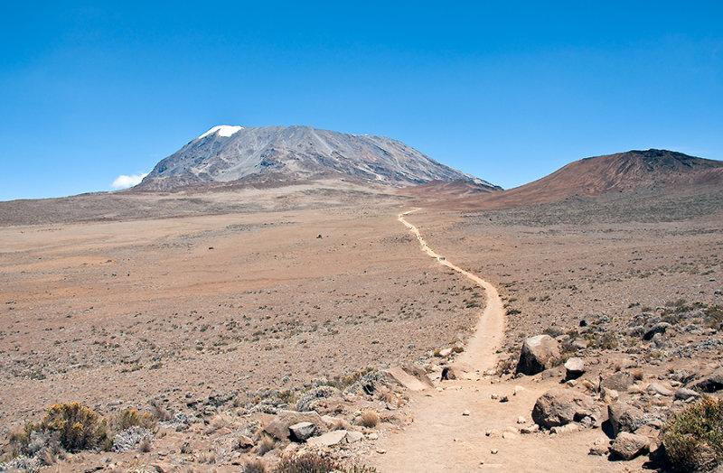 Trail Through Semi-desert