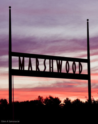 Marshwood Colors