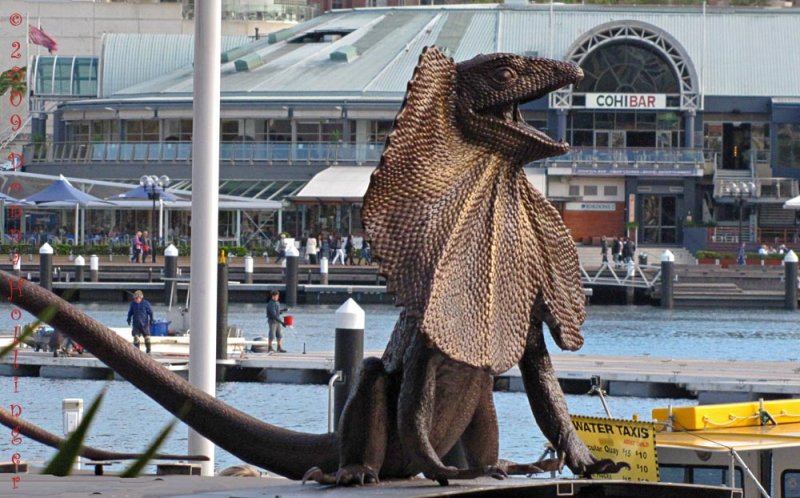 Sydney Harbor Mall Trolley Art