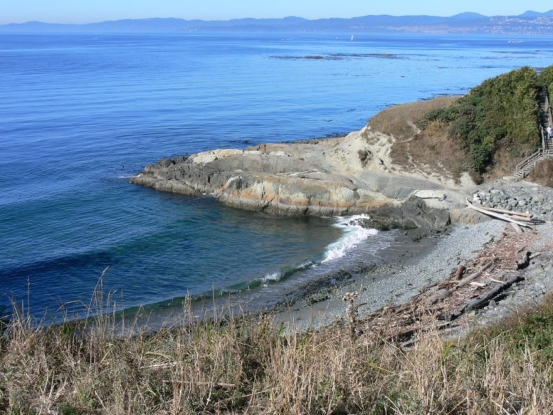 The shore line at Beacon Hill Park. Looking out over the Straits of Juan de Fuca
